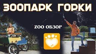 «ZooОбзор» Зоопарк Горки